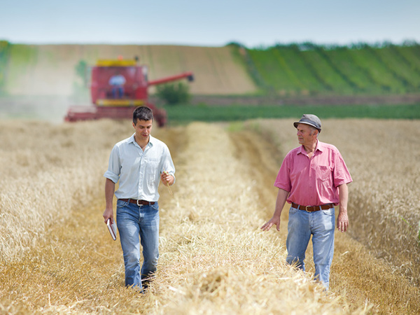 agriculteurs-sodiama